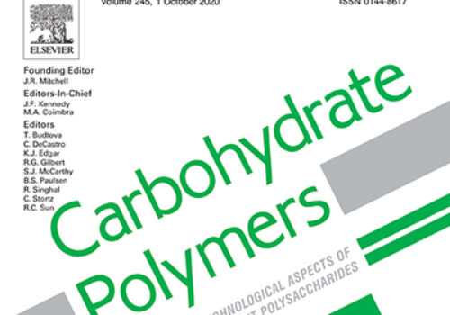Synthesis of nanocomposite hydrogel based carboxymethyl starch/polyvinyl alcohol/nanosilver for biomedical materials