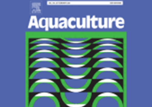 Optimization of three anoxygenic photosynthetic bacteria as feed to enhance growth, survival, and water quality in fairy shrimp (Streptocephalus sirindhornae) cultivation